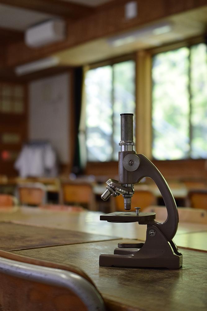 さる小 顕微鏡